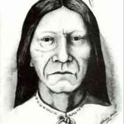 Large avatar crazyhorse